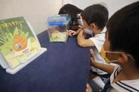 「かたつむりがキャベツ食べてるよ~」クラスでかたつむりの産卵・孵化を体験しているまつ組さんの鋭い観察の眼が光ります。