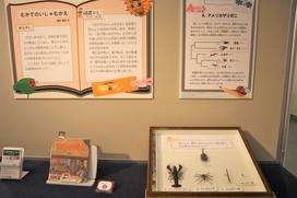 絵本『むかでの いしゃむかえ』「この中で一番昆虫に近いのは、どれでしょう?」
